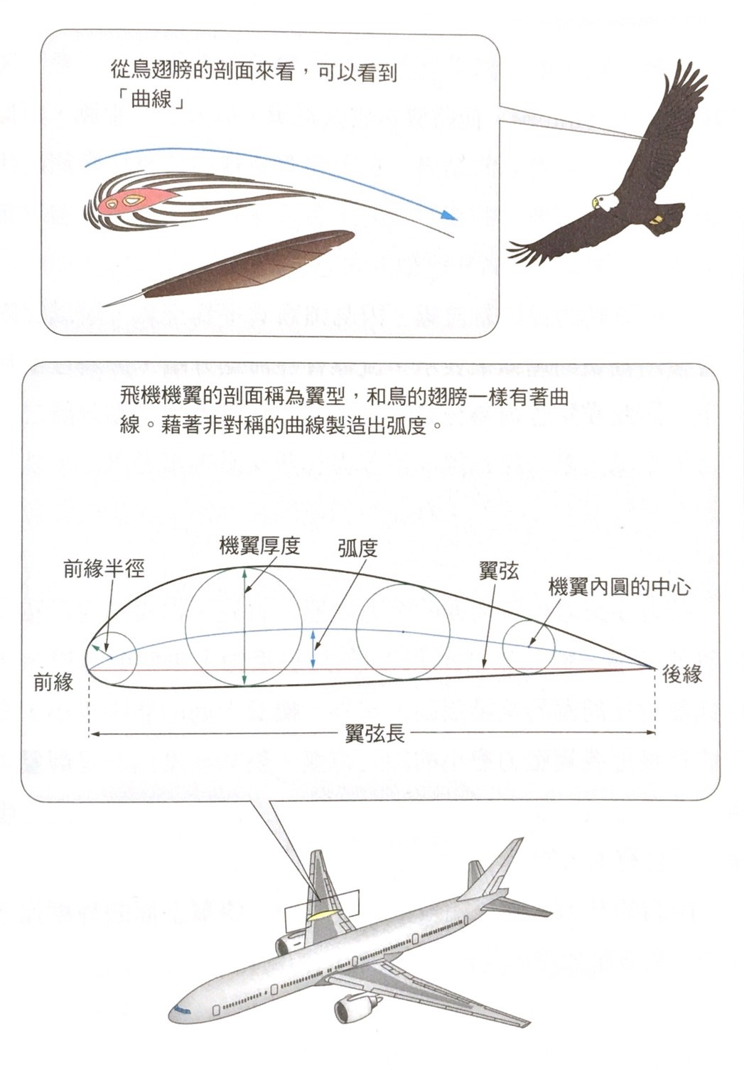 在機翼中畫圓,畫線將圓心連接起來,將「弧度」與「翼弦長」做比對,兩者之間的比例以%表示。